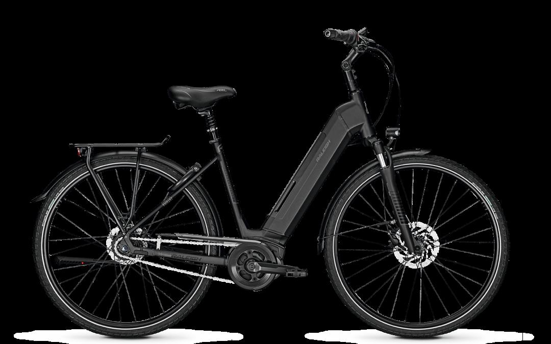 Raleigh, E-Bike, Bristol 8 Gang, grau