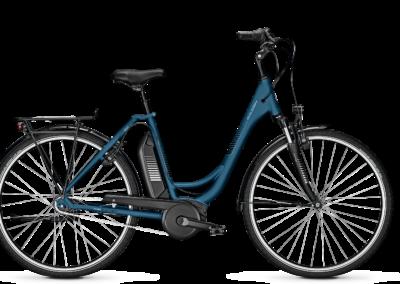 Raleigh E Bike Jersey Rücktritt blau