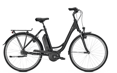 Raleigh E-Bike Jersey Plus