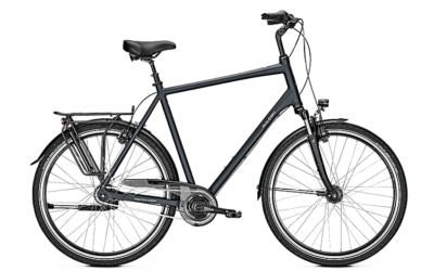 Raleigh CHESTER 8 XXL 2019, Herrenrad